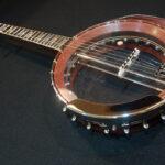 Bubinga Banjo